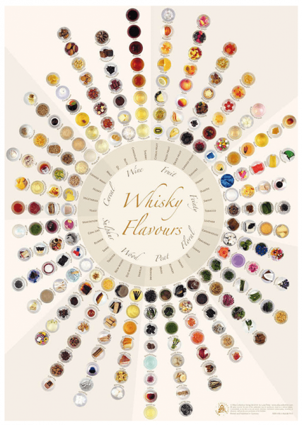 Alba Collection - Whisky Flavours Wheel - Poster Standard Edition 42x60cm